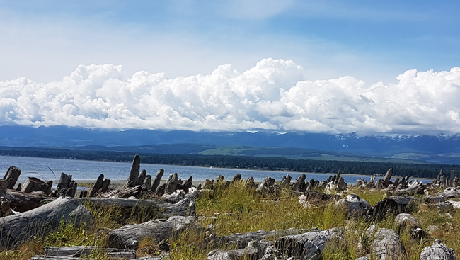 Take a trip to Comox Valley