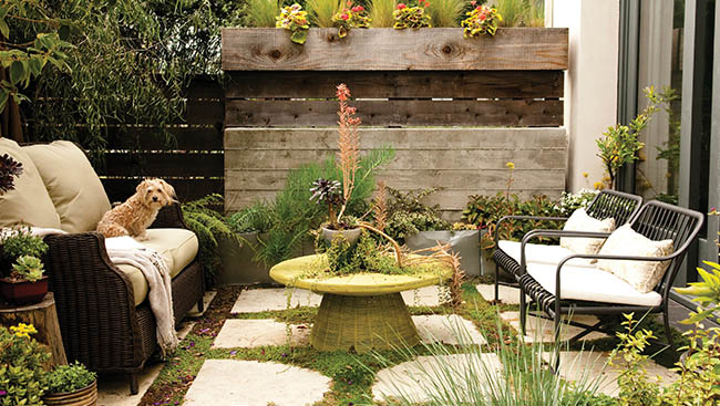 Are You Backyard Ready for Spring?