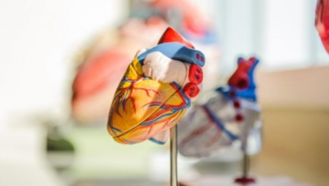 Are young Indians at a higher risk of heart disease?