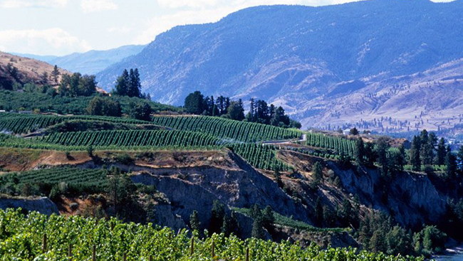 Thompson Okanagan Region to earn International Biosphere Destination certification