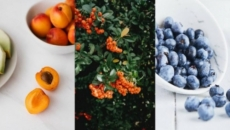 Herbs, nuts and fruits to enhance your daily diet