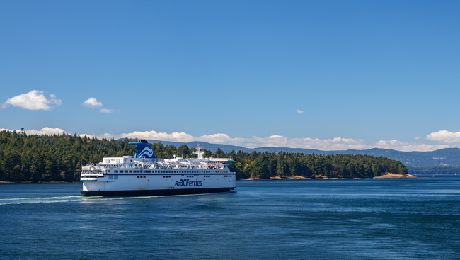 Rescue, lengthy delay on separate BC Ferries runs