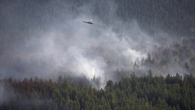 Evacuation alert for wildfire near Princeton, B.C.