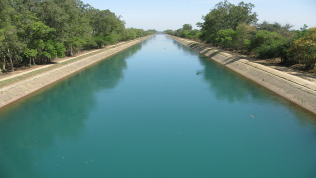 Unemployed teachers try to commit suicide by jumping into Bhakra Canal
