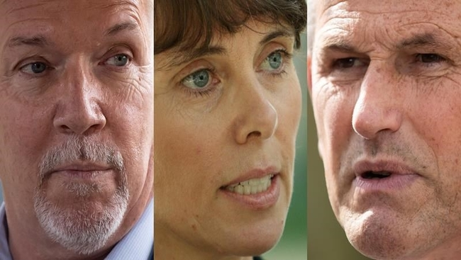 B.C. NDP leader 'disappointed' in party candidate