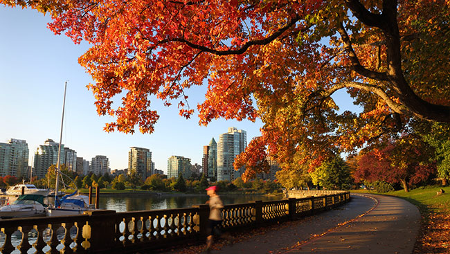 Warmer-than-normal fall expected this year