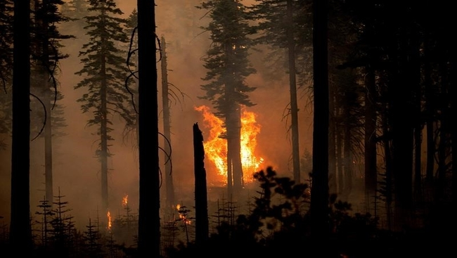 Canadian firefighters being redirected to Oregon