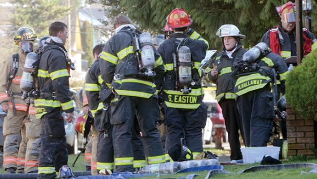 Cows Killed In One Of Two Early Morning Blazes In Pitt Meadows, B.C.