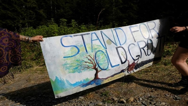 RCMP move to end forest blockade in B.C.