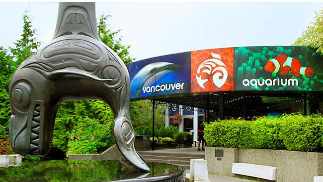 Vancouver Aquarium has been sold to US tourism operator, Herschend Enterprises