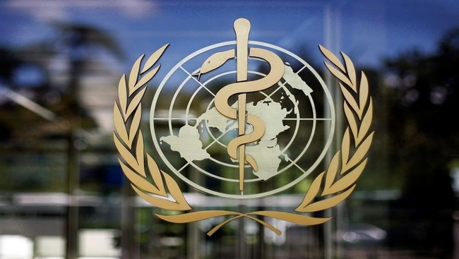 Members named to panel probing WHO's pandemic response