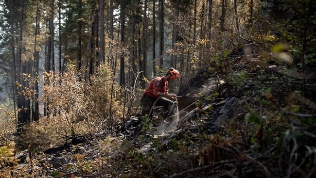Evacuation orders due to B.C. wildfires drop