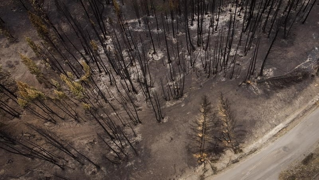 Mexican wildfire fighters set to leave B.C.