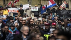 Anti-lockdown protests linked to far right: expert