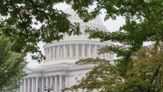 U.S. Senate battles offer political drama aplenty