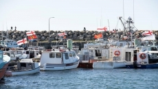 Mi'kmaq fishery not a concern for lobster stocks: expert