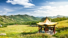Chinese city of Mongolia issues warning of bubonic plague amidst COVID-19