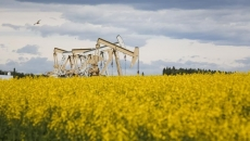 Canada leads G20 in financing fossil fuels: report