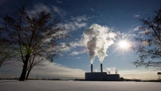Climate change to cost more than COVID-19: study