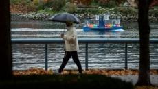 Storm, wind hits southern B.C., but no damage