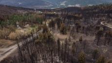 No train link to wildfire in Lytton, B.C.: TSB