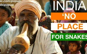 What Happened To India's Banned Snake Charmers?
