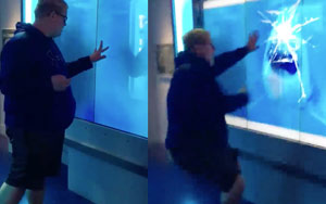 'Shark' Charges At Man, Cracks Aquarium Glass. Watch His Reaction