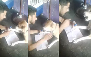 Watch: Man Repeatedly Slaps Dog For Not 'Writing' ABCD